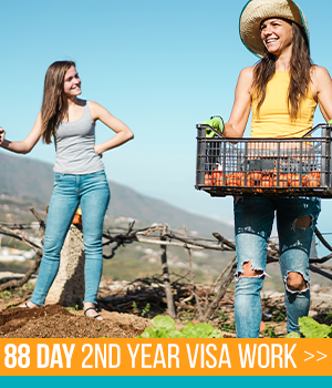 2nd Year Visa Work